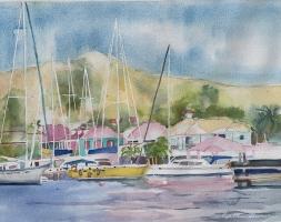 BVI's, Soper's Hole, Tortola
